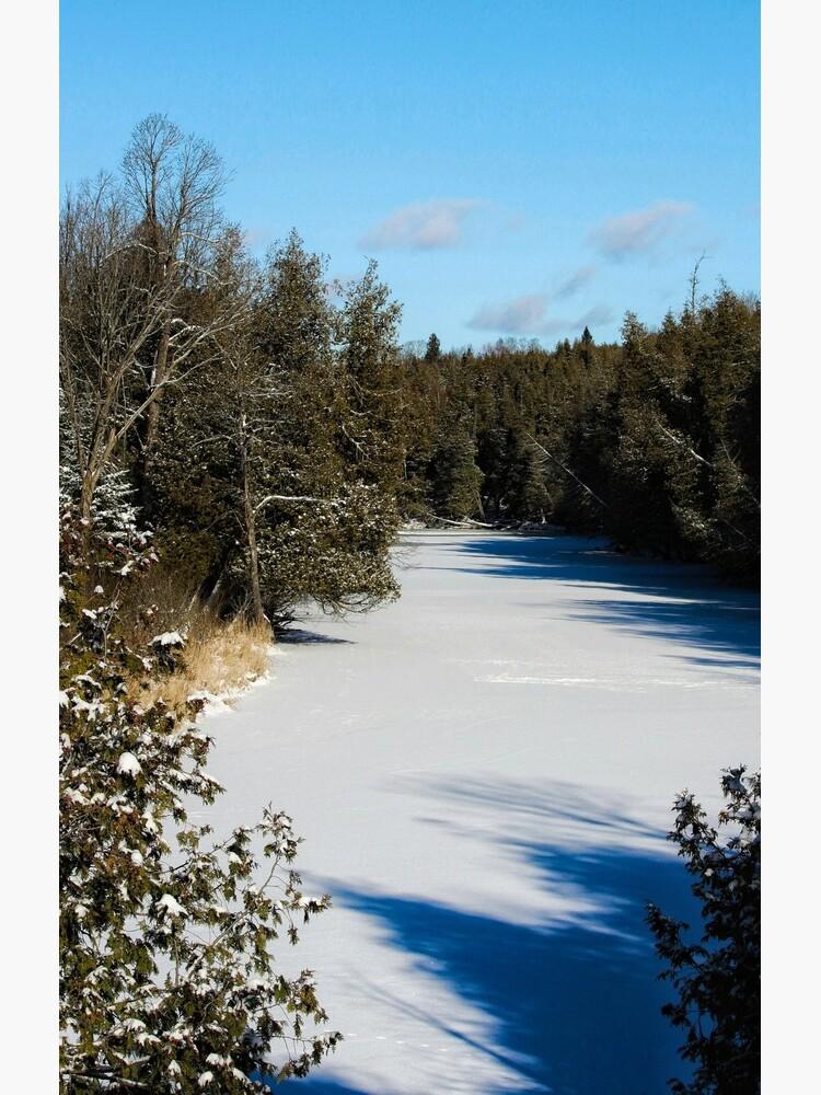 Winter riverview by debfaraday