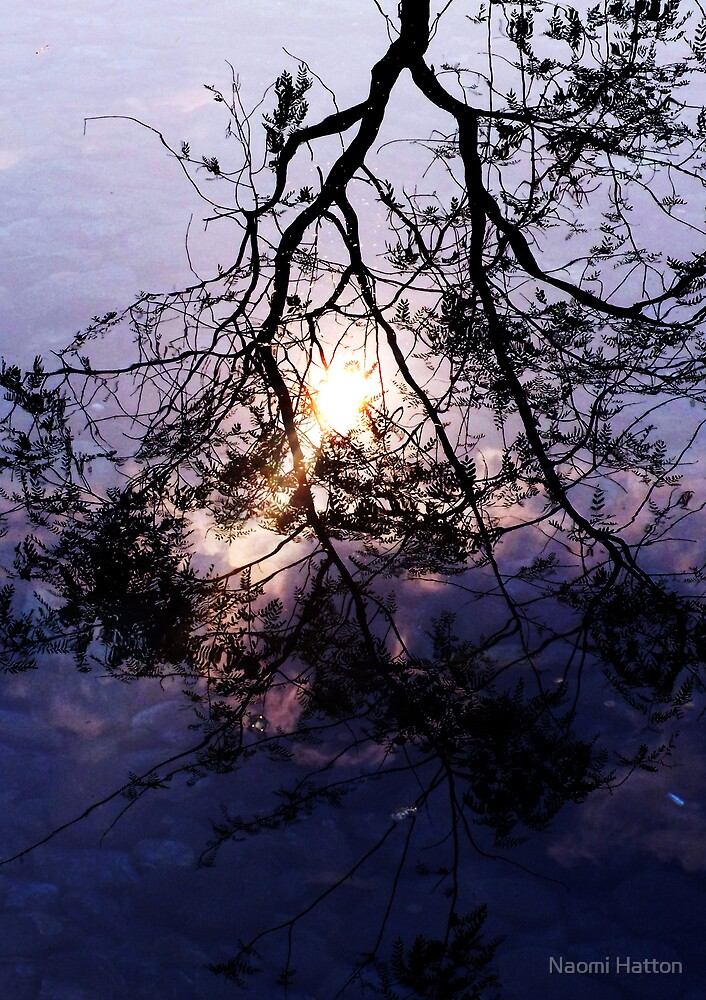 Reflections by Naomi Hatton