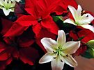Lilies and Poinsettia by Sandy Keeton