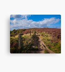 Walking up the hill Canvas Print