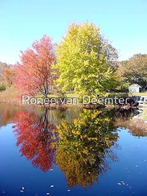 New England Reflections by Ronee van Deemter