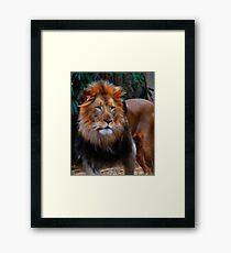 Fractalius King Framed Print