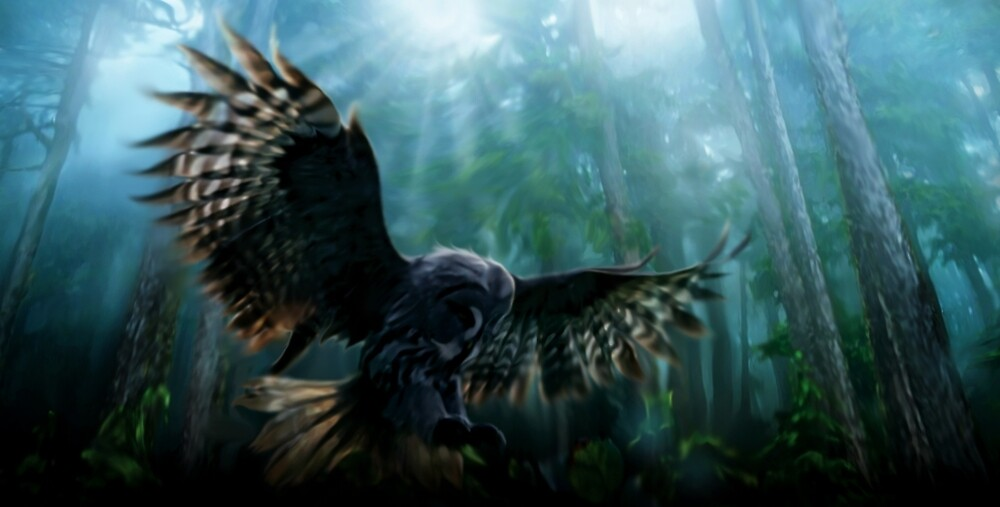 Forest Owl by Cliff Vestergaard