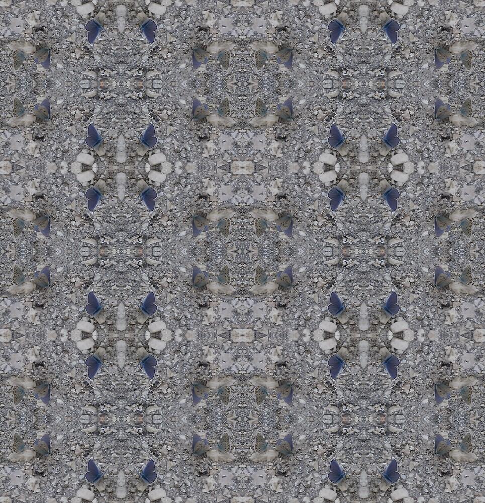 Greek Butterfly Photo Pattern 1 by Julia Woodman