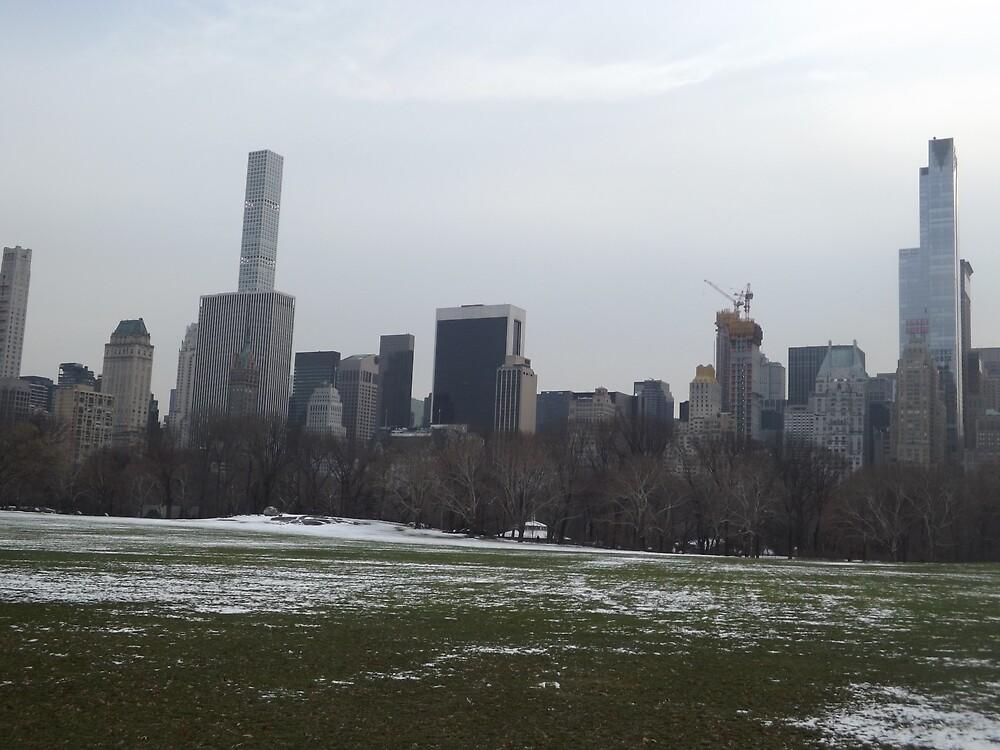Central Park South Skyline, Snow View, New York City  by lenspiro
