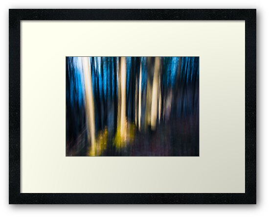Abstracted Autumn Woods by Randall Talbot