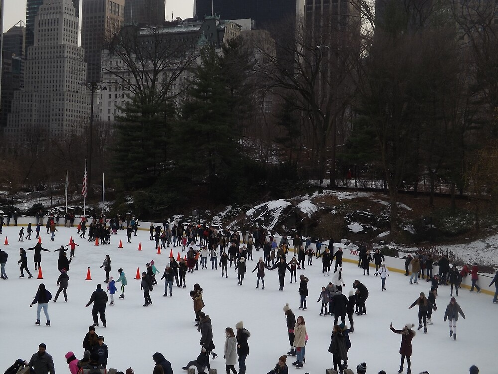 Central Park Skating, New York City  by lenspiro