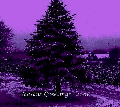 purple tree ~ entry by e  owen