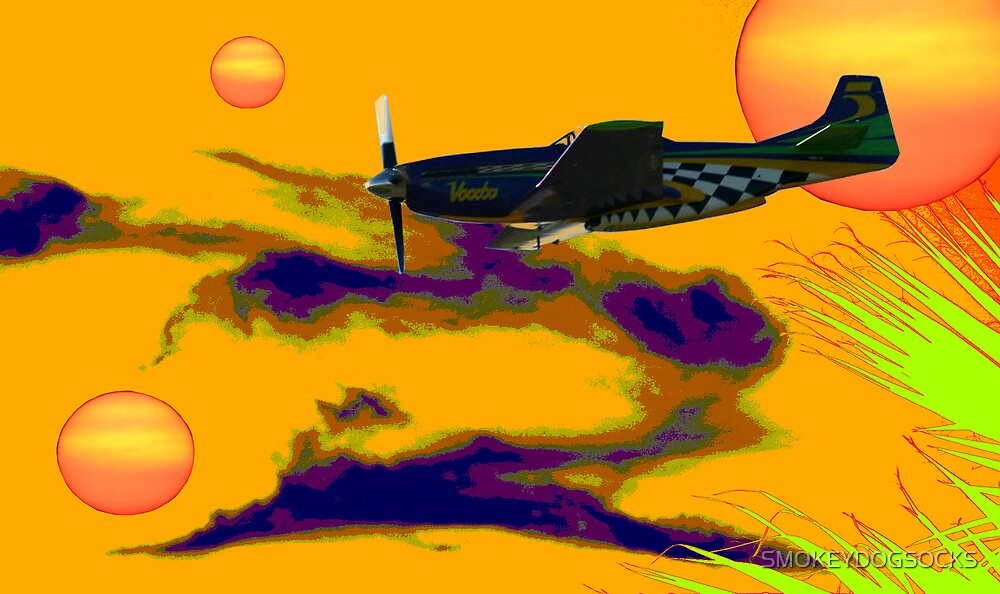 CRUISING THE SKY OF TRYSKILLIAN by SMOKEYDOGSOCKS