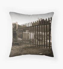 The Old Pumphouse Throw Pillow