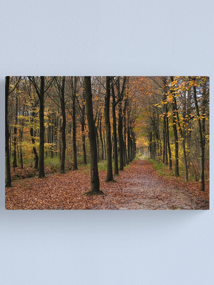 Alternate view of Rows Canvas Print