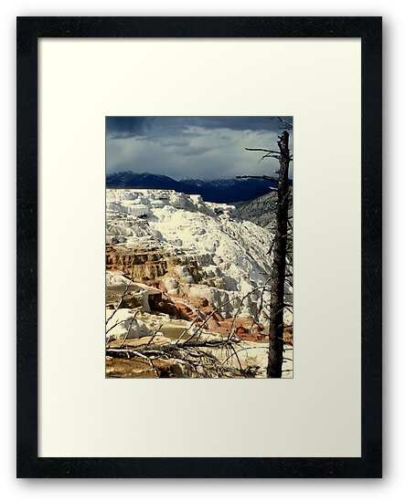 Mammoth Hot Springs 2 by Bob Moore
