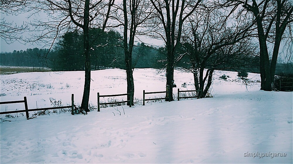 winter scene by simplypaigerae