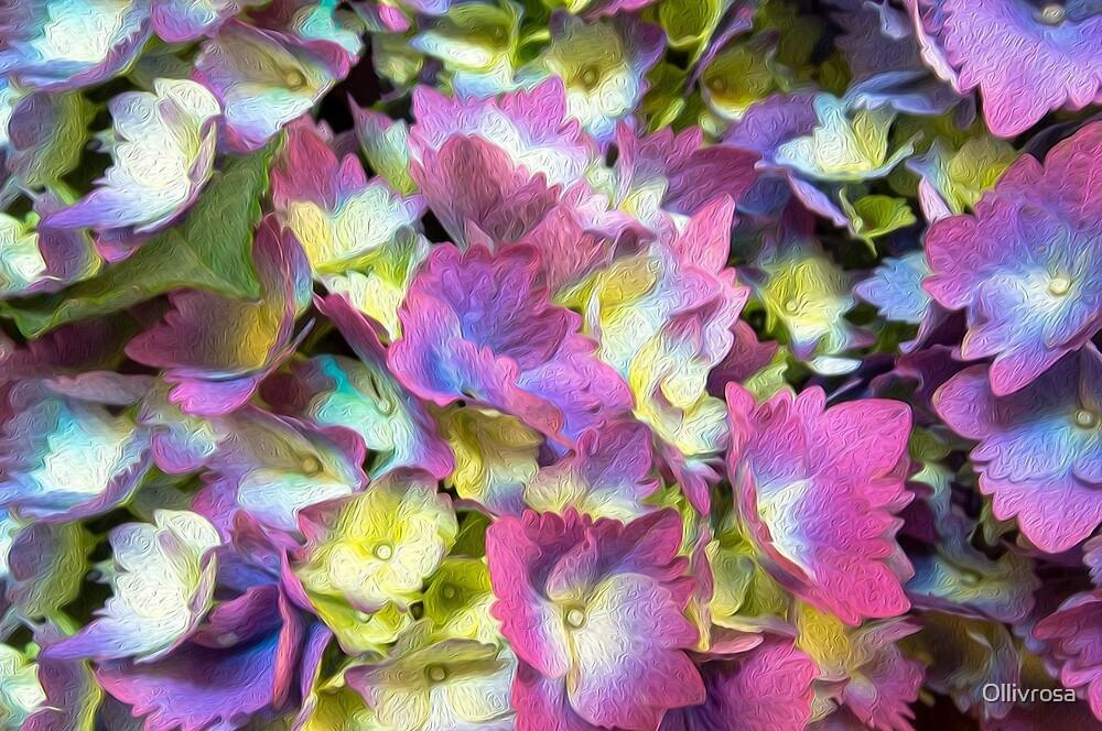 Painted Hydrangeas by Ollivrosa
