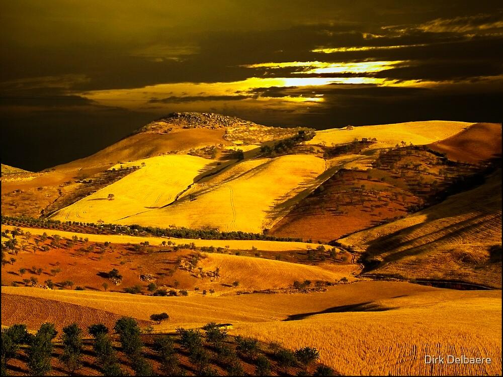 Orange landscape by Dirk Delbaere