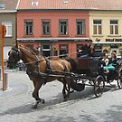 Horse and cart- Bruges, Belgium 2008 by chico123