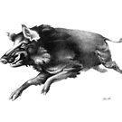 Running Boar by Patricia Howitt