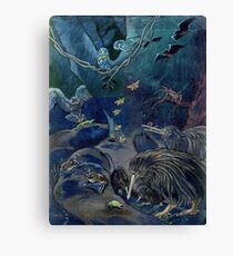 Kiwi, Bats, Morepork and More Canvas Print