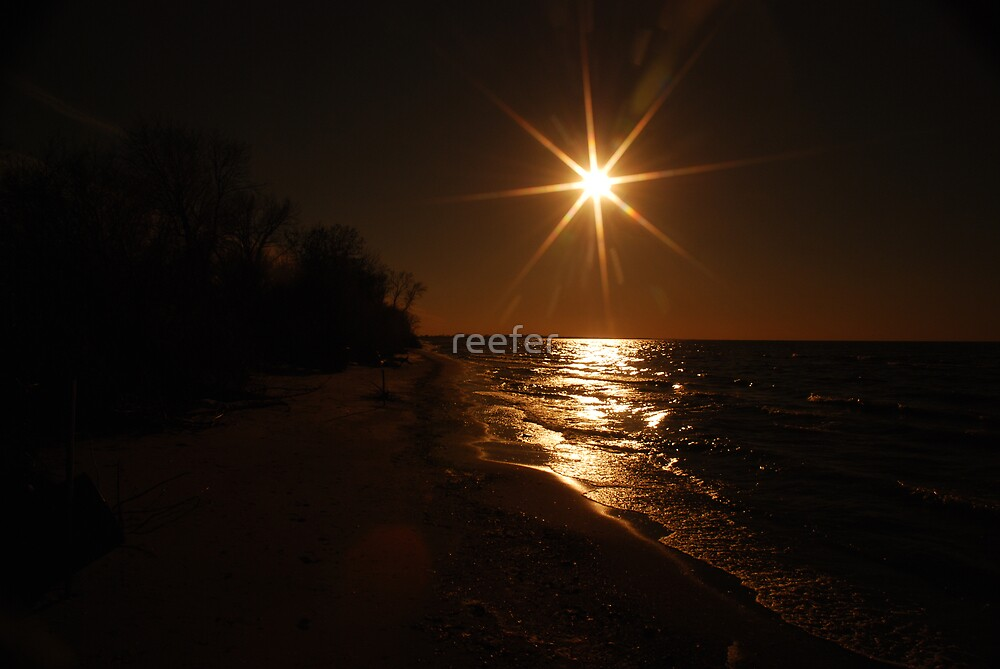 Lonely beach by reefer