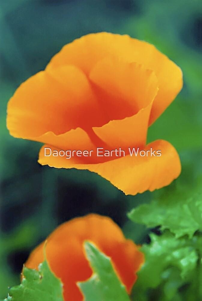 Promontory Halfway by Daogreer Earth Works
