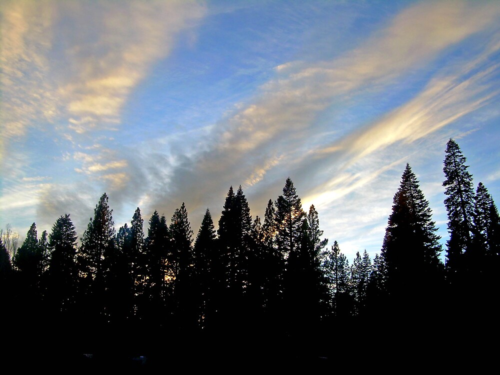 The clouds of an approaching Winter Storm #1 by Edward Henzi