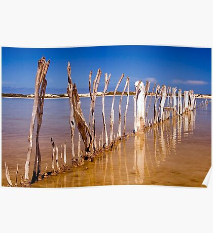 Fish Trap fence Poster