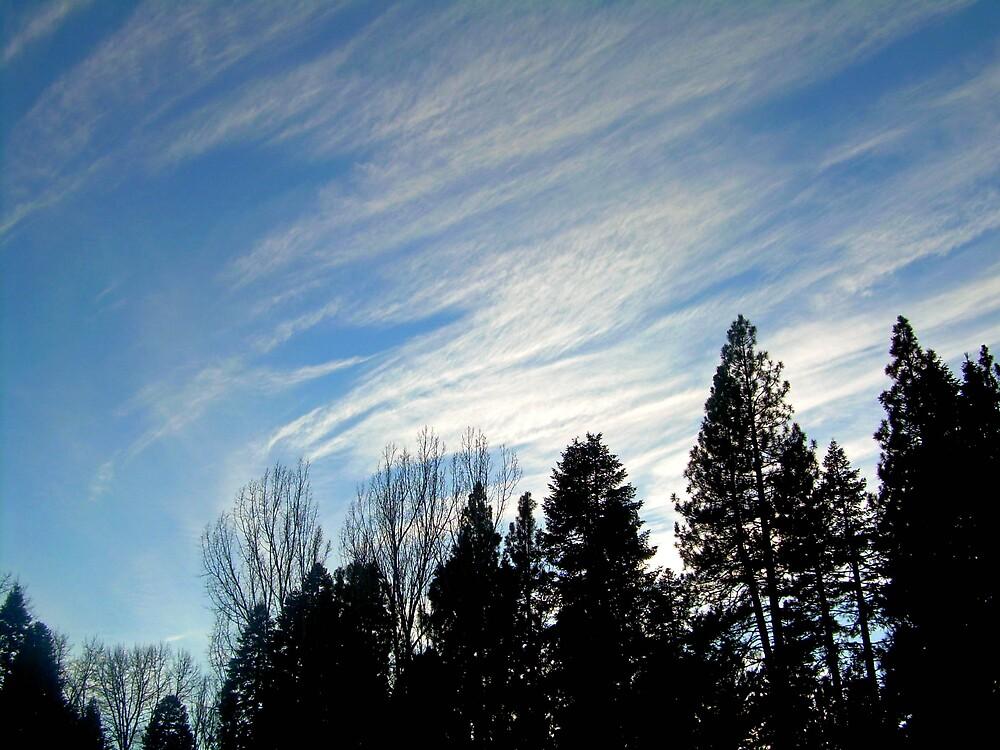 Clouds over the High Sierra #2 by Edward Henzi