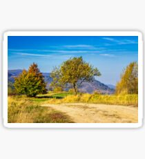 trees near the meadow path in autumn mountains Sticker