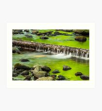 cascade on the little stream with stones in forest Art Print