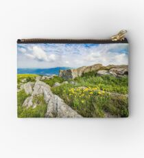 dandelions among the rocks on hillside Studio Pouch