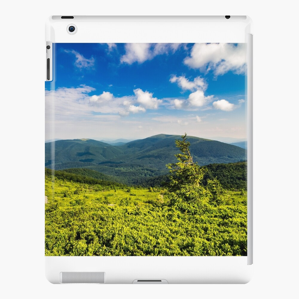 conifer tree with stone on hillside iPad Snap Case