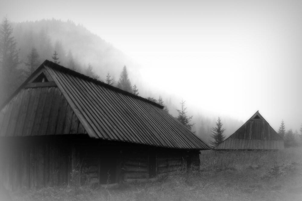 Untitled by Agnieszka Piatkowska