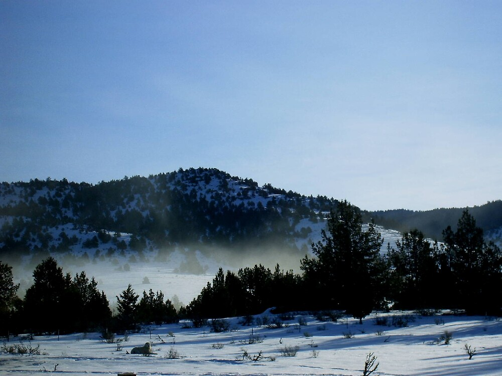 fog in the mountains by boondockMabel