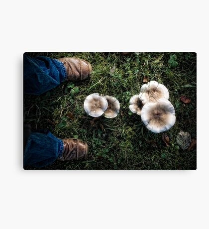 Me and some mushrooms Canvas Print