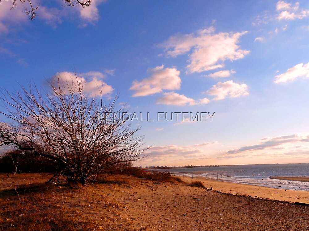 COTTON TAIL SKIES by KENDALL EUTEMEY