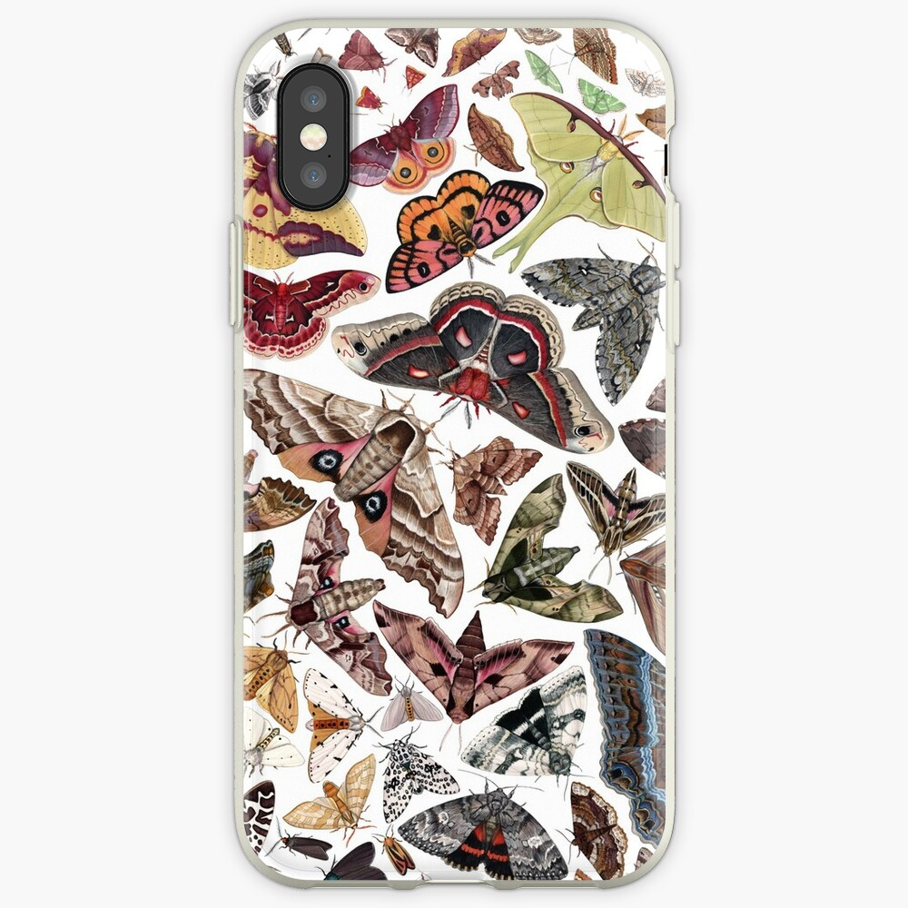 Moths of North America Pattern iPhone Case & Cover