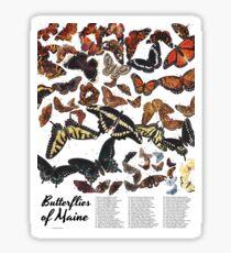 Butterflies of Maine Chart Sticker
