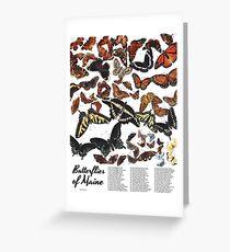 Butterflies of Maine Chart Greeting Card