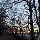 Night, Trees, Sunset, Water, Bridge by znamenski