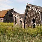 South Dakota Twins by TingyWende