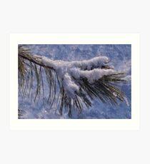 cold evergreen -craquelure Art Print