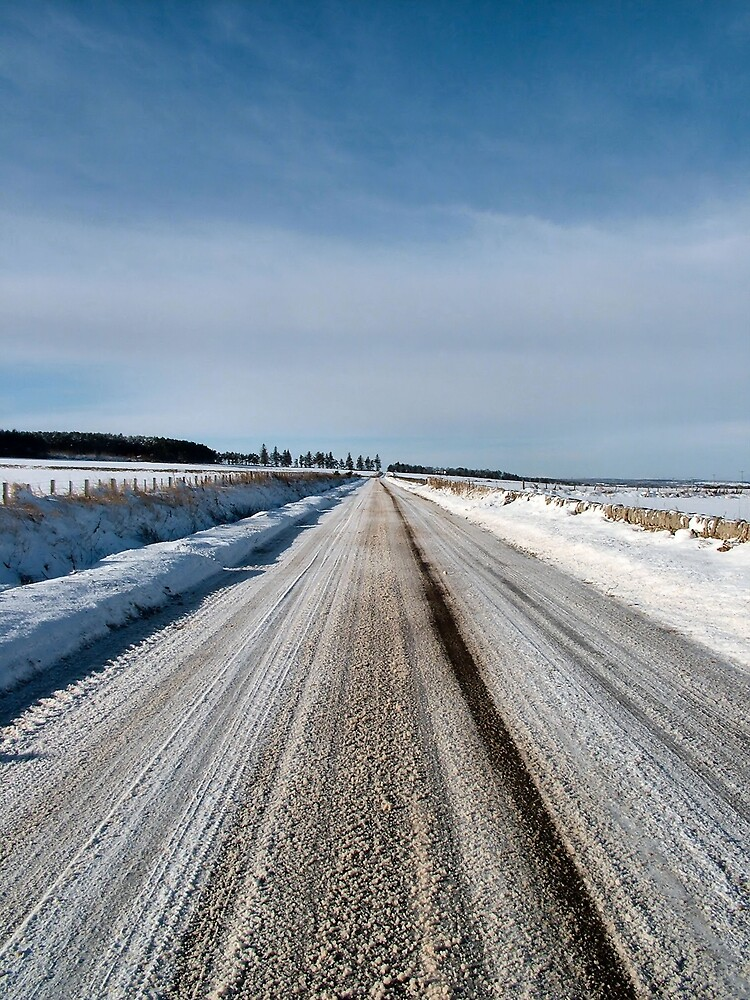 Looking up the County Road by Calum Davidson