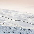 Snowscape by RedGrouse