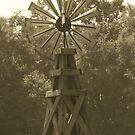 Windmill by randi1972