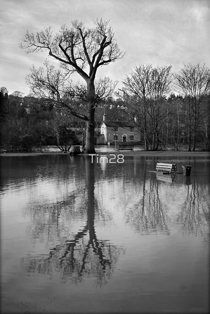 Bewdley Flood by Tim28