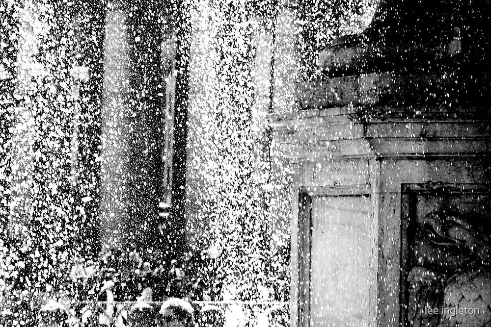 Rome fountain by lee ingleton