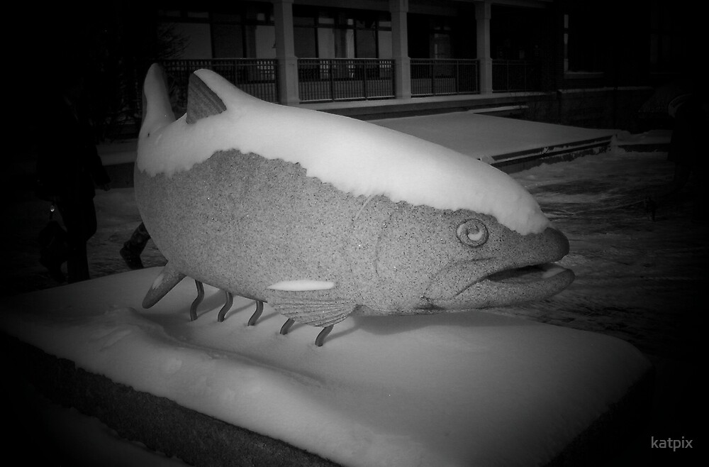Fish in the Snow by katpix