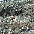 My weekend trip to Giant's Causeway in Northern Ireland. by valizi