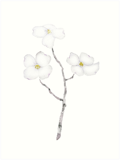 White dogwood flower watercolor art prints by colorandcolor white dogwood flower watercolor by colorandcolor mightylinksfo