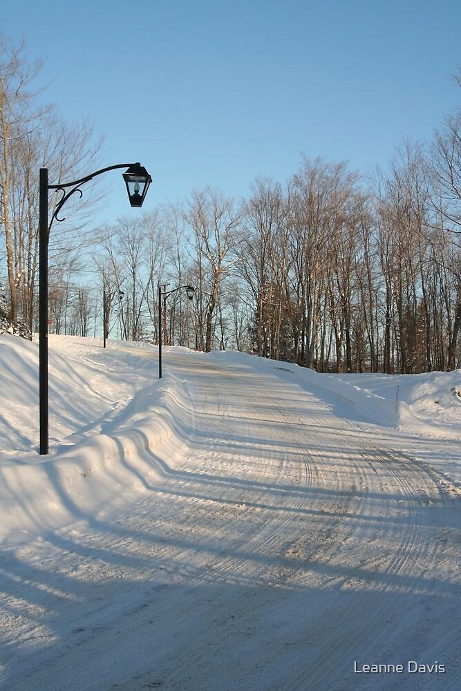 Winter's morning by Leanne Davis